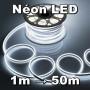 Kit néon LED flexible blanc froid